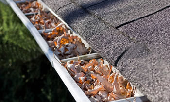 gutter cleaning Cleveland
